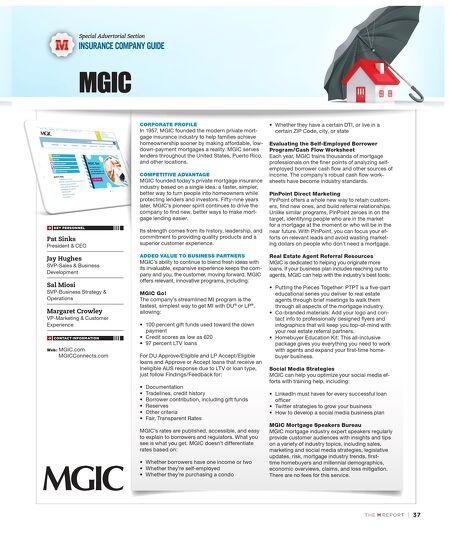 Worksheet Mgic Self Employed Worksheet mgic self employed worksheet 2016 intrepidpath borrower worksheets