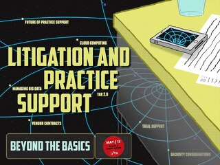 May 2013: Litigation and Practice Support