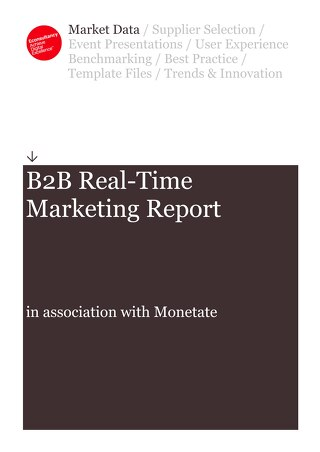 B2B Real-Time Marketing Report