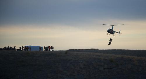 Bighorn sheep tracking effort sets sights on future lambs