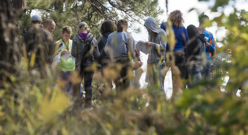 Chadron State Park Bioblitz tops 200 species