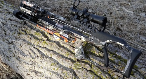 The Rise Of The Modern Crossbow