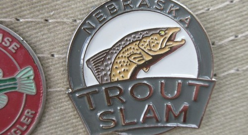 Trout Slam Update, May 2018