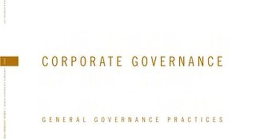 2007 Corporate Governance Survey