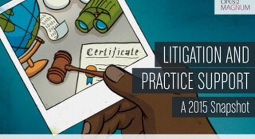 Litigation and Practice Support (May 2015)