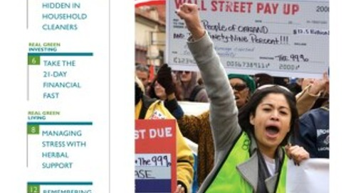 Green American #87, January-February 2012