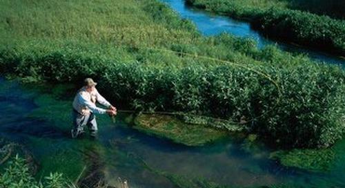 Trout Fishing in Nebraska Streams