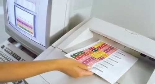 On Demand File Folder Label Print Software Printing Long Color Coded Name Labels