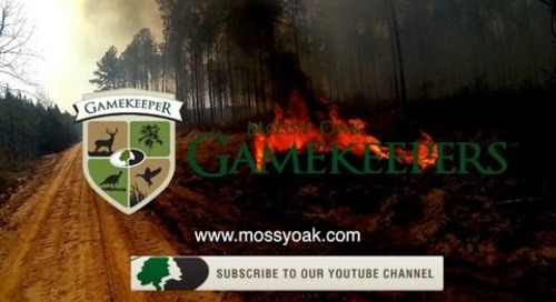 Controlled Burning for Wildlife - Mossy Oak