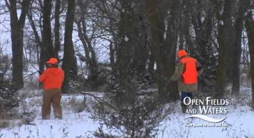 Open Fields & Waters 3 PSA's
