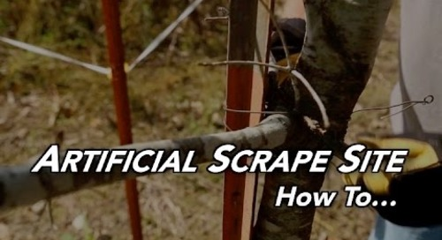 How To | Artificial Scrape Site