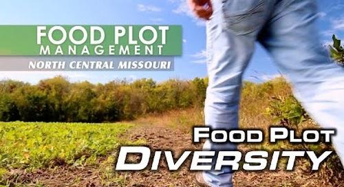 Food Plot Diversity | MossyOakGamekeepers