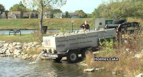 Lincoln Trout Stocking