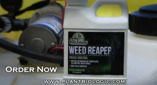 Weed Reaper Grass Control