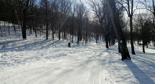 Exploring Montreal in Winter
