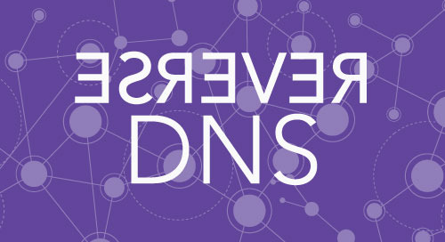 in-addr.arpa Reverse DNS